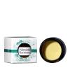 Palmetto Harmony CBD Cannacense Cream