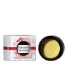 Palmetto Harmony CBD Holy Cannacense Cream