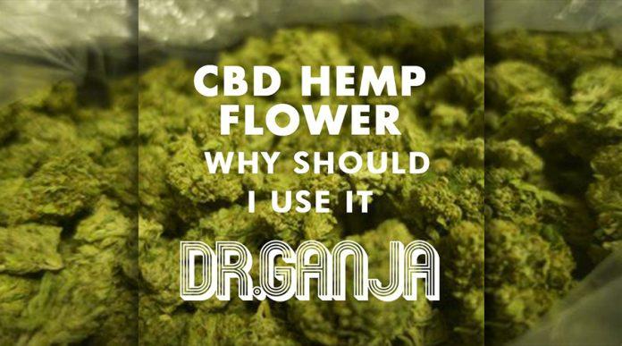 CBD vs THC – Difference Between Marijuana & CBD Hemp