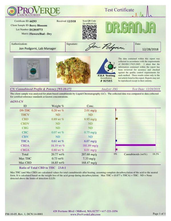 DrGanja Berry Blossom CBD Flower Potency Test