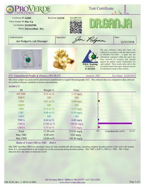 DrGanja Rise Up CBD Flower Potency