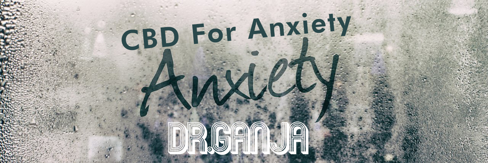 Best CBD products for Anxiety? Dr.Ganja