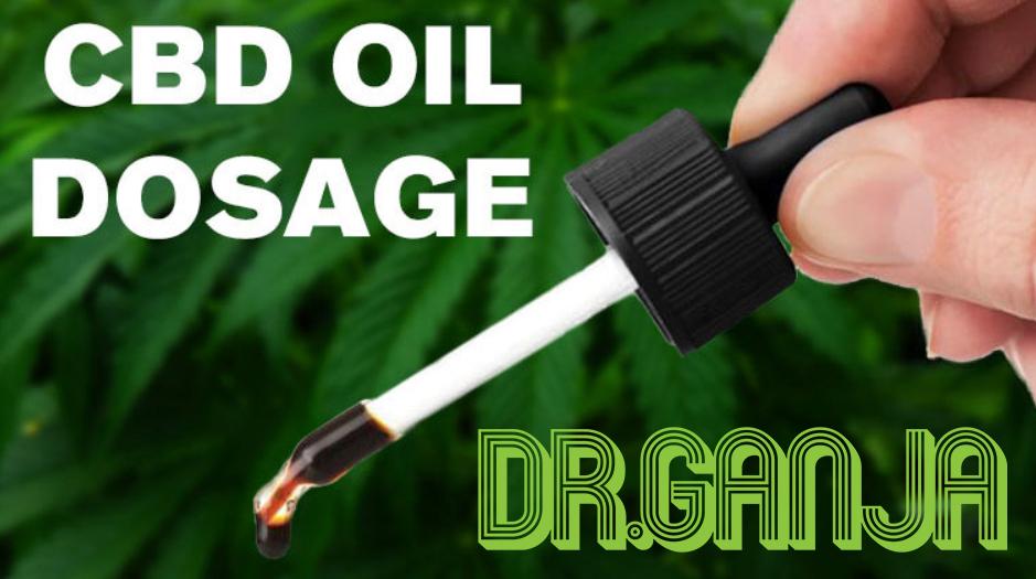 CBD Oil Dosage: How much should you take? Dr.Ganja