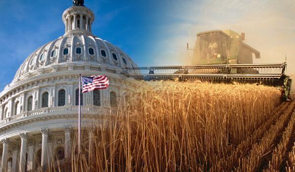 Farm Bill 2019