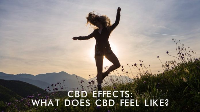 CBD Effects: What Does CBD Feel Like?