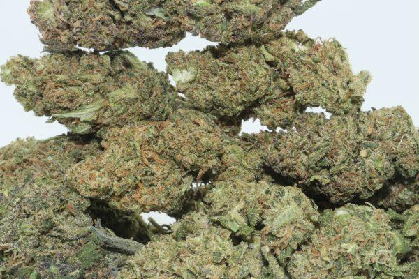 Dr.Ganja Sour Blueberry Kush Hemp Flower