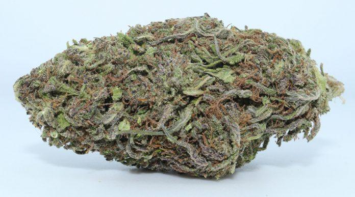 Pineberry CBD Flower Strain Review
